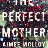 Book Review: The Perfect Mother by Aimee Molloy