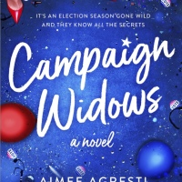 Book Review: Campaign Widows by Aimee Agresti [& 4 Things I Learned]