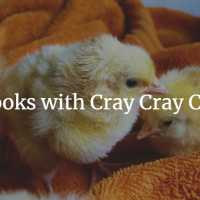 5 Books with Cray Cray Chicks
